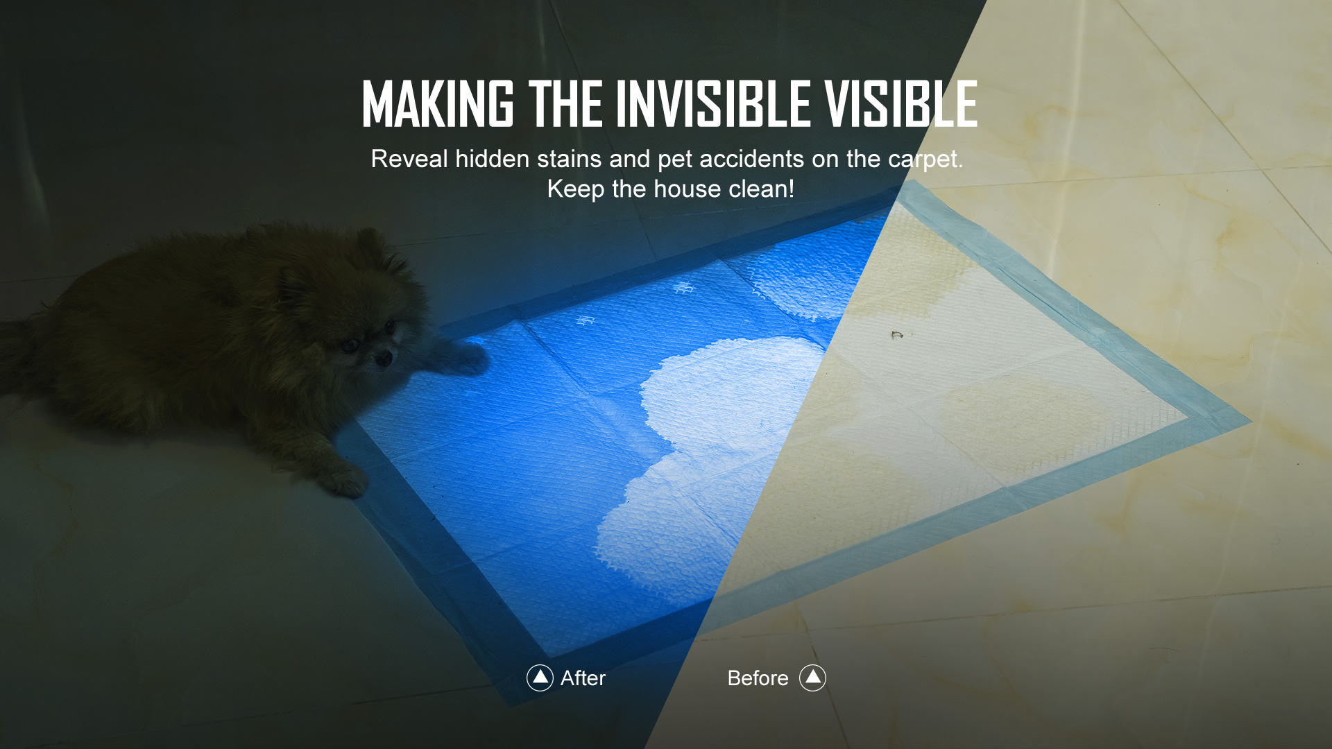 Olight i5 UV EOS Ultraviolet Flashlight Invisible to Visible